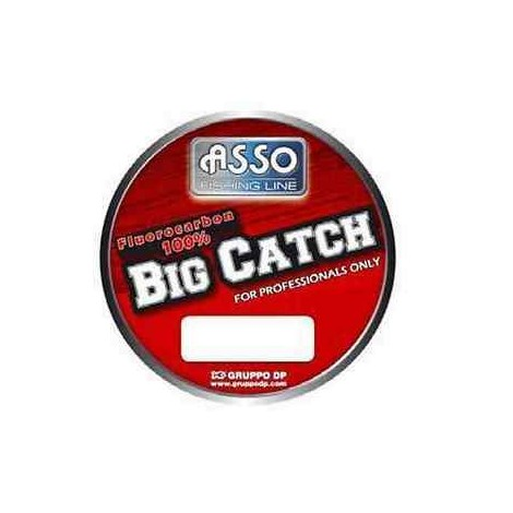 ASSO BIG CATCH 0,20MM/2.8KG-150M
